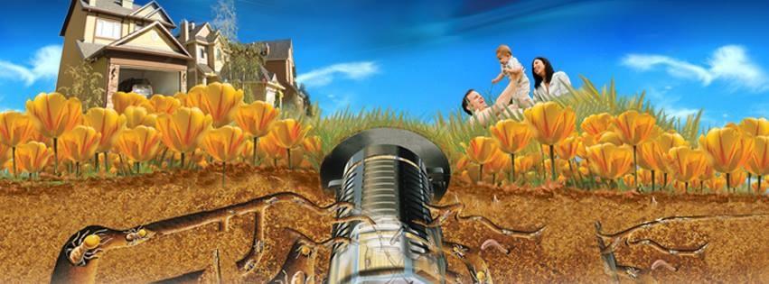 ob_e0a2a7_traitement-des-termites-par-pieges-bo
